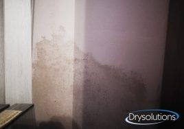condensa-ambientale_drysolutions_7